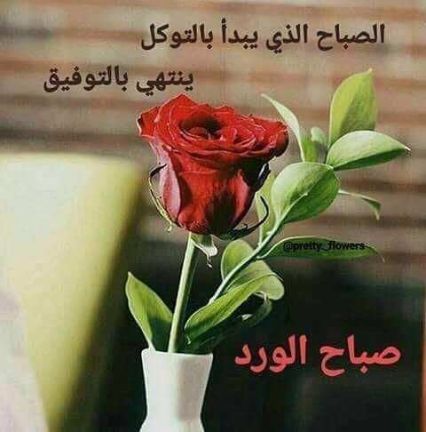 صباح الورد والتوكل